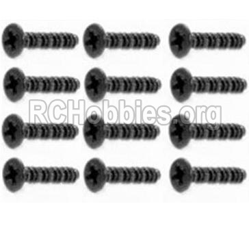 HBX Survivor MT 12811-Round Head Self Tapping Screws-2.6X25mm-S201